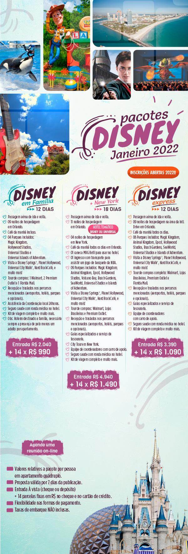 Disney + NYC