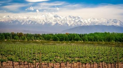 Escapada a Mendoza - pacote terrestre